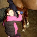 sortie poney 2011 028