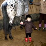 sortie poney 2011 056