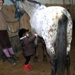 sortie poney 2011 057