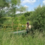 Laneuvelotte Randonnee VTT 2012-06-10 233